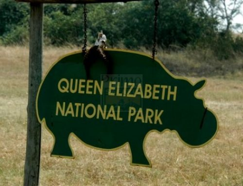 The upsetting tales of people living within Queen Elizabeth National park – Uganda safari News