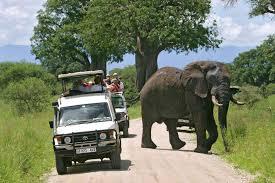 7 days Murchison Falls National Park